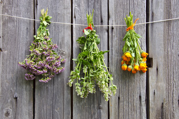 three medical herbs bunch on old wooden wall