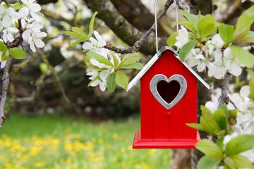 Rotes Vogelhaus am blühenden Baum