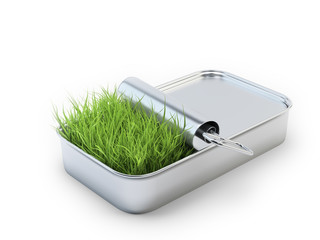 Grass growing out of a tin can