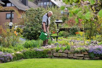 Senior arbeitet im Garten
