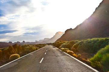 The road to the reserve Tenerife, Canary islands, Spain
