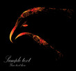 Vector image of eagle head on black background