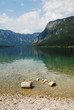 Lake Bohinj Shore