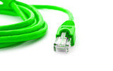 Green network cable on white.