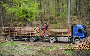 Holztransporter