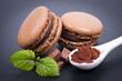 Macaroons, chocolate