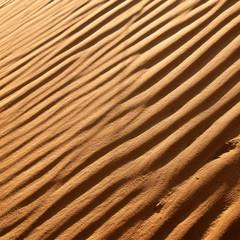 desert dunes close-up