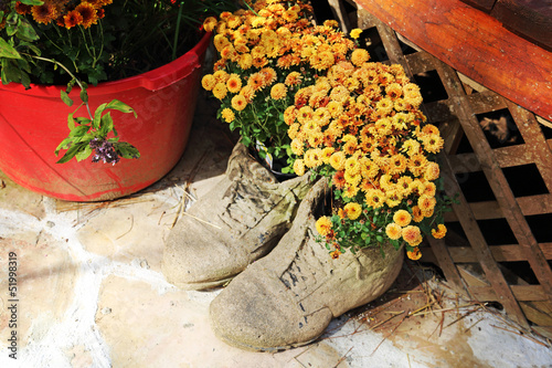 Flowers in Shoe Pot