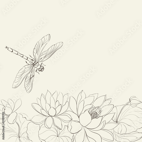Lotus flower and dragonfly