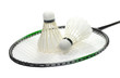 Badminton racquet and two feather shuttlecocks isolated