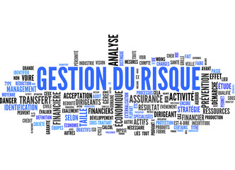 gestion du risque (tag cloud)