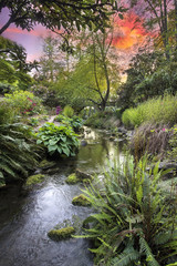 Stream at Crystal Springs Rhododendron Garden Sunset