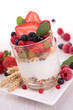 yogurt, cereals and berries