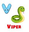 alfabeto, vipera