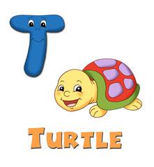 alfabeto, tartaruga