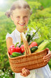 Gardening, vegetables - lovely girl with basket of vegetables