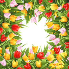 Flower background with tulips