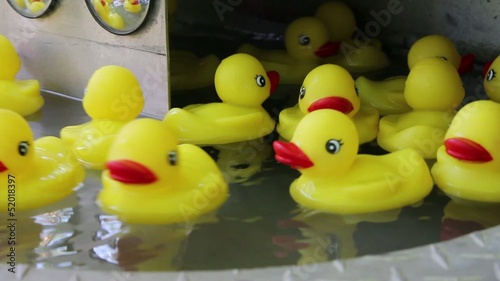 Rubber Ducky Toys Floating in Water with Mirror Reflection
