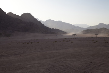 Mount Sinai in Egypt