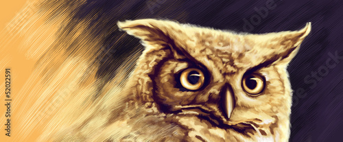 drawing of Great Horned Owl staring with golden eyes