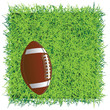 Football ball on the field