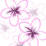 drawing Frangipani background