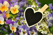 Holzklammer mit Herztafel - Blumen - Natur