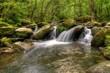 Fototapeten,landschaft,wasserfall,wasser,rio
