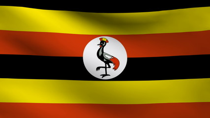 Uganda flag.