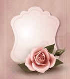 Fototapety Retro greeting card with pink rose. Vector illustration