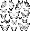 butterfies tattoo silhouettes - 52036775