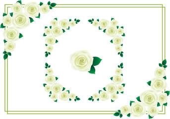 バラ フレーム 白