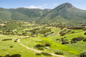 Sardegna, Buggerru, Punta Su Guardianu