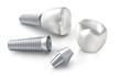 Zahnimplantat in Einzelteilen