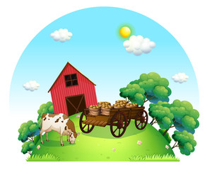 A cow and a carriage in front of a barn in the farm