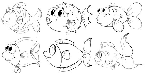 Different doodle design of fishes