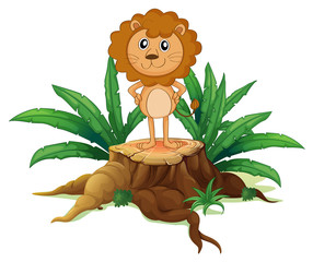 A little lion standing on a stump with leaves