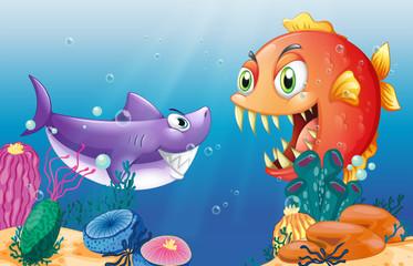 A prey and a predator under the sea