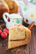 Yogurt coffee cake with cinnamon streusel, selective focus