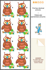 Visual puzzle - find two identical pictures of owls