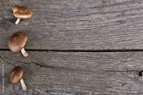 mushrooms on wood kitchen table