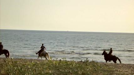 Galoppando in riva al mare