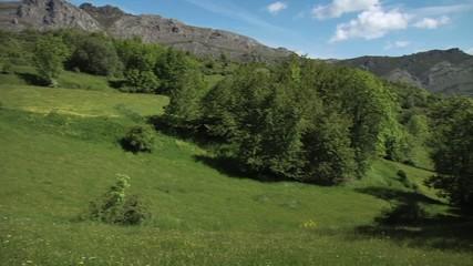 Prados de montaña. León. España
