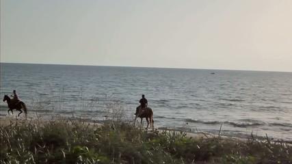 Cavalcata in riva al mare