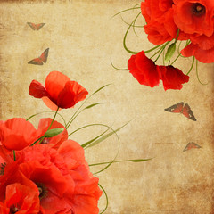 Vintage greeting card with poppies and butterflies