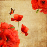 Vintage composition with poppies, butterfly and space for text