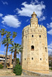 Tower of gold, Torre del Oro, Sevilla