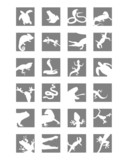 Icons of reptiles and amphibians poster