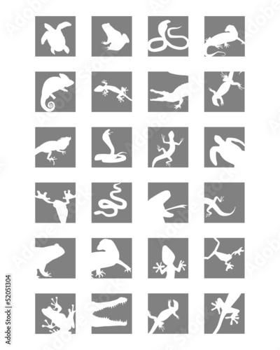 Icons of reptiles and amphibians