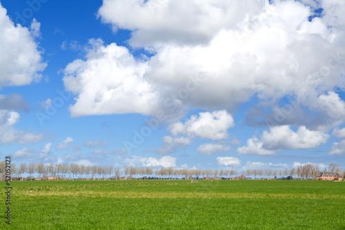 beautiful Dutch farmland